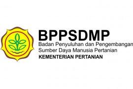 Kalbar surplus padi 50 ribu hektare