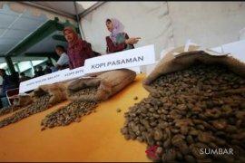 PetroChina dukung Pemkab Tanjabtim kembangkan kopi liberika