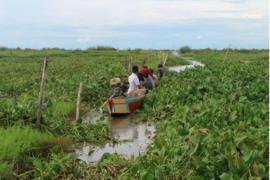 Cerdas IPB inisiasi adaptasi iklim di Danau Tempe