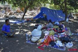 Wapres kunjungi pengungsi korban gempa Lombok