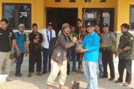 Komunitas Bekasi tanam bambu di Muara Sungai Citarum