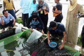 Pemerintah genjot produksi benih ikan air tawar