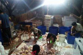 Akhirnya, harga telur dan daging ayam Sukabumi turun