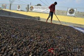 Garut ekspor kopi ke China dan Taiwan