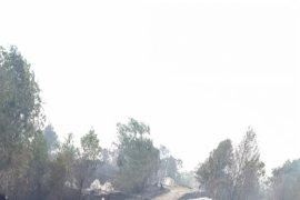 Kawasan pemakaman Tionghoa Sungai Ayak terbakar