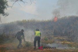 Kebakaran ilalang terjadi di kawasan industri Karawang