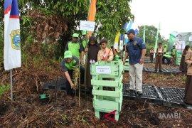 PetroChina tanam pohon langka di hutan kota Muarasabak