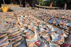 Ikan melimpah, Pemkab Sikka ingin gaet investor Jepang
