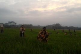 """Seniman performa """"jinjit"""" pagi di Festival Lima Gunung"""