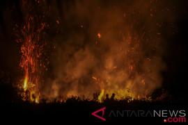 Hutan Gunung Bancak di Magetan terbakar