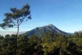 Gunung Merapi keluarkan lima kali guguran Lava