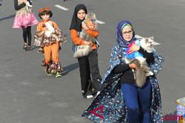Hewan peliharaan ikut berlenggak-lenggok di Jember Fashion Carnaval