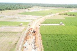 Masih ada 15 hektare lahan di Mukomuko belum dicetak jadi sawah