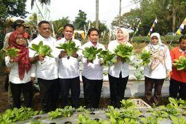 BPTP Banten dukung Rumah Pintar Petani di Pandeglang