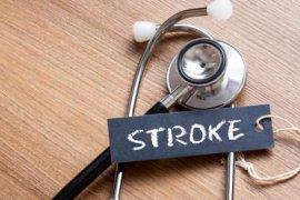 Waspadai makanan tinggi kalori saat Lebaran untuk cegah stroke