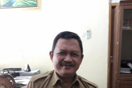 11 honorer K2 Bangka Tengah berpeluang diangkat menjadi PPPK