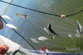 Angin kencang, nelayan enggan melaut