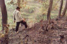 Penyebab kebakaran Gunung Suta Sukabumi diselidiki