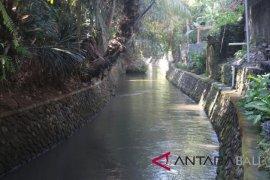 Sungai Bindu Denpasar jadi objek wisata baru