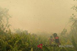 Kebakaran lahan mulai marak  di Palangka Raya