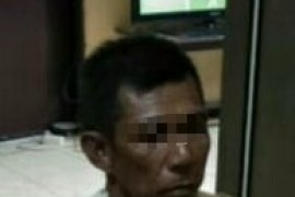 Polsek Danau Panggang amankan pencuri kerbau rawa