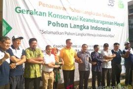IPB inisiasi gerakan konservasi tanam pohon langka