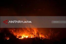 BPBD Sebut Puluhan Pendaki Lawu Belum Turun (Video)