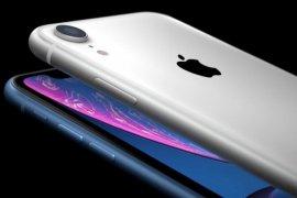 LG Display jadi pemasok OLED kedua untuk iPhone