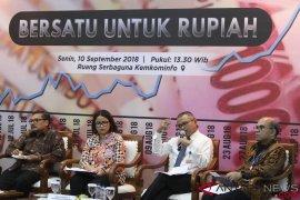 Pemerintah pastikan buat kebijakan terukur atasi gejolak rupiah