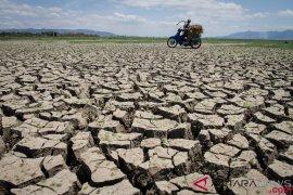 Cirebon masih berpotensi kekeringan ekstrem