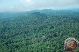 Realisasi perhutanan sosial Kalteng baru 131.589 hektare