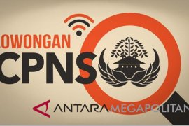 Kuota CPNS Pemkab Purwakarta 317-350 orang