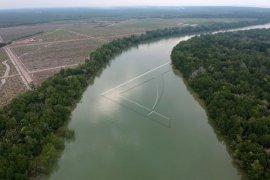Cagar alam hutan mangrove di Jambi terancam