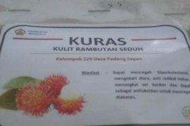 Mahasiswa Bengkulu olah kulit rambutan jadi teh