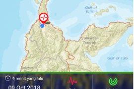 Gempa Selasa pagi di Palu tak timbulkan kerusakan