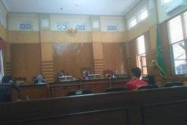 Pengadilan Bogor vonis penjual Kukang 'online'