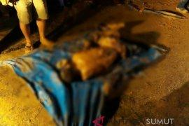 Tiga orang tewas tertimbun longsor di Muara Batang Gadis