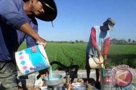 Petrokimia: Tidak Ada Kelangkaan Pupuk Bersubsidi di Jatim