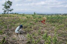Warga terdampak pembangunan bandara Sukabumi 100 KK