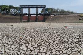 Sejumlah daerah Jawa, Bali dan Nusra berpotensi kekeringan ekstrem