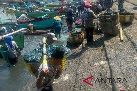 Atasi harga ikan, HNSI Jembrana rintis koperasi