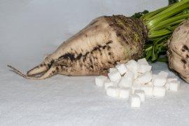 Gula dari buah bit tekan laju obesitas dan diabetes