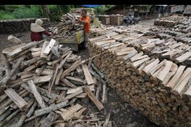 Warga Wondama kembali memanfaatkan kayu bakar