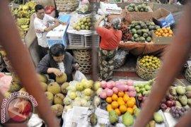 Kementan RI tawarkan hortikultura kepada Iran