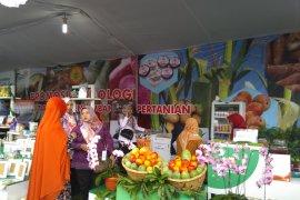 Indonesia berpotensi pasarkan produk pangan bebas gluten