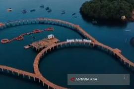 Pemkab Situbondo Targetkan Kunjungan Wisata 2019 Meningkat 15 Persen