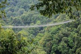 Ayo! Susuri jembatan gantung terpanjang se-Asia di Sukabumi