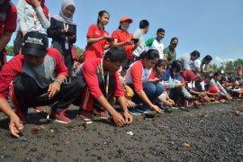 Dinas Lingkungan Hidup Gianyar lepas tukik bersama Kirab Pemuda