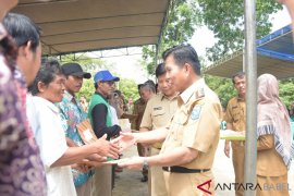 Pemkab Bangka Tengah salurkan 240.000 bibit lada