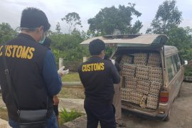 Karantina Entikong musnahkan belasan ribu telur ilegal